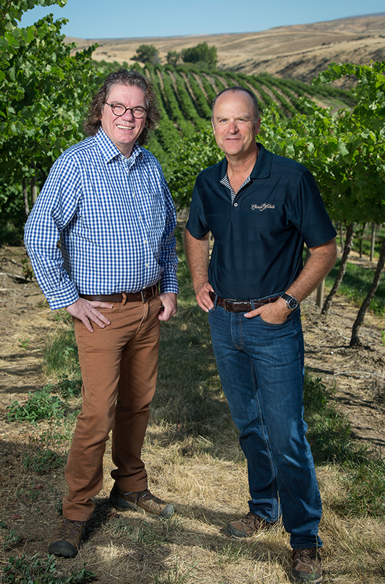 Vineyards winemakers 1